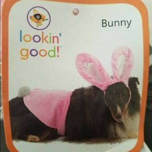 NWT Easter Bunny Costume for Dog Size XL